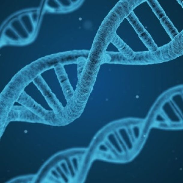 "Epigenetics, An International Guide | Epigenetics Literally Means "" On Top Of The Gene""."