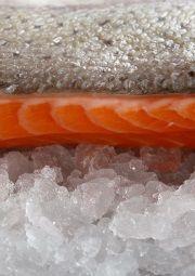 astaxanthin in salmon