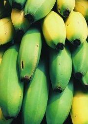 bananas health benefits