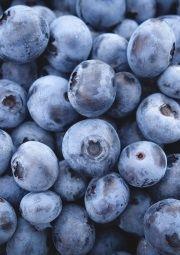bilberries health benefits