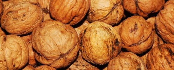black walnuts for heart health