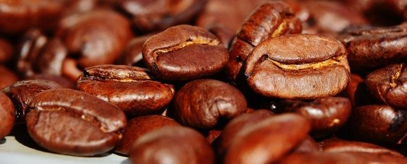 coffee compounds that lessen brain degeneration