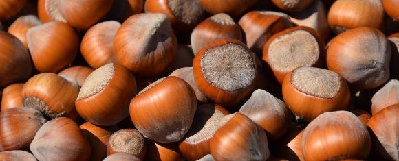 hazelnuts linked to improved micronutrients
