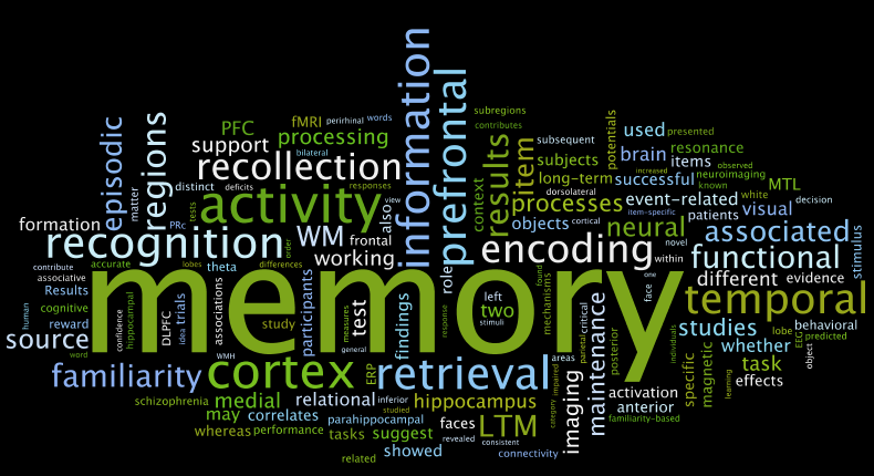 Supplements To Improve Memory