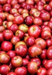 organic apples health benefits