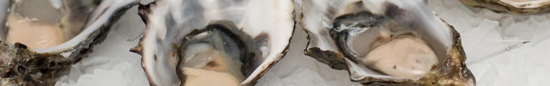shellfish iodine source