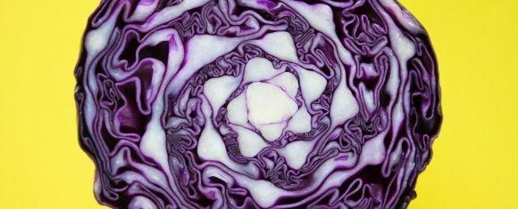 purple cabbage health benefits